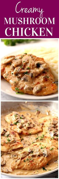 Creamy Mushroom Garlic Chicken Recipe - juicy chicken in creamy garlic mushroom sauce served with mashed potatoes or pasta for a quick and delicious dinner!