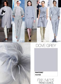 Pantone / Dove Grey / FW 2015