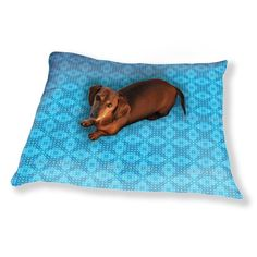 Cool Pool Dog Pillow Luxury Dog / Cat Pet Bed ** To view further for this item, visit the image link. (This is an affiliate link and I receive a commission for the sales)