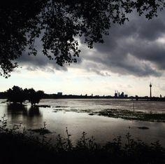 Der Rhein braucht gerade etwas Platz ... #duesseldorf #bilk #urban