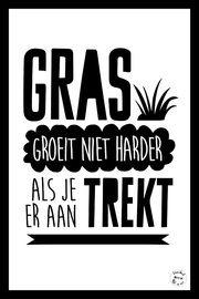 Gras groeit niet harder als je er aan trekt via uniekbovendebank.nl