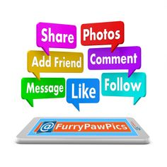 Let's go Furry PAW Nation... It's the takeover! www.furrypawpics.com #furrypaw #furrypawlife #pawlife