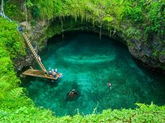 The green plunge Where: Samoa, South Pacific Wild factor: 8 The Tosua Ocean Trench is surrounded by lush green trees and allows swimmers to enjoy beautiful clear water. It's nearly a drop into the pool, located near the sea on the tiny island of Upolu. Best Swimming, Swimming Holes, Dream Vacations, Vacation Spots, Maui Vacation, Family Vacations, Family Travel, Grotto Pool, Places To Travel