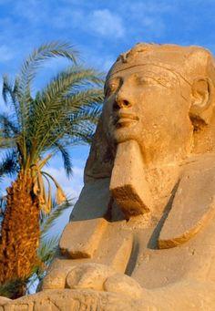 "Karnak ~ Avenue of Sphinxes ~ Egypt ~ Miks' Pics ""Ancient Egypt"" board @ http://www.pinterest.com/msmgish/ancient-egypt/"