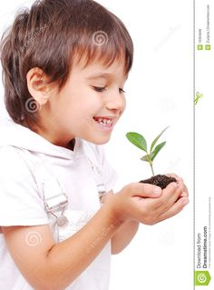 Little Cute Child Holding Green Plant In Hands Royalty Free Stock Photos - Image: 10353698