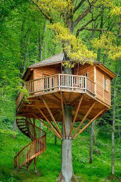 Die Vögel zwitschern, die Blätter rauschen, die Luft ist klar und frisch – ein Urlaub im Baumhaushotel ist ein Urlaub der ganz besonderen Art. In einem gewöhnlichen Hotelzimmer kann schließlich jed…