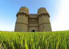 Torres de Serranos con campos de arroz.