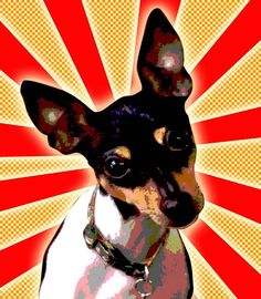 Rat Terrier pop art