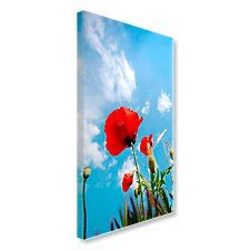 Poppies against the sky Art Images, Poppies, Vibrant, Canvas Art, Sky, Floral, Creative, Painting, Color