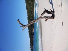 Murrays Beach, Booderee National Park