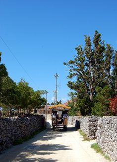 Buffalo car. Taketomi Island Okinawa Japan.kurosuke ishigaki