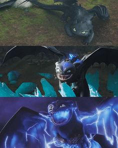 I do not dragon Httyd Dragons, Dreamworks Dragons, Cute Dragons, Toothless And Stitch, Hiccup And Toothless, Night Fury Dragon, Dragon Movies, Pokemon, How To Train Dragon