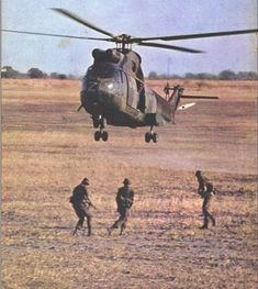 Colonial, Planes, South Africa, Camel, African, Military, War, Aircraft, Animals