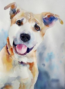Sebastian by Yvonne Joyner Watercolor ~ x. Looks exactly like our dog, Kiera. Amazing. Like she posed for this!