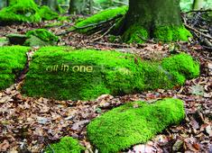 """""""all in one one in all""""est une oeuvre d'herman de vries gravée directement dans une pierre, cachée sous la mousse avec le temps. Située dans le Steigerwald. #orcadredorure#hermandevries#stone#art#gold#steigerwald Mousse, Interior Design Kitchen, Les Oeuvres, Stepping Stones, Contemporary Art, Concept, Outdoor Decor, Google Search, Landscape"""