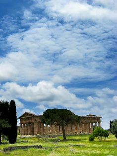 14Second Temple of Hera - Paestum - Italy (von Aesum)