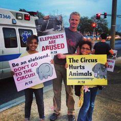 No more circus!