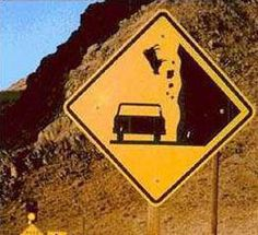 Cows Falling sign