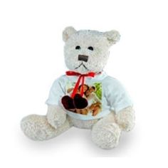 Peluche Osito Teddy. San Valentín