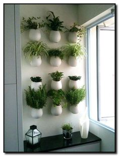 Herb wall garden ideas hanging fun and easy indoor outdoor design small storage g . indoor wall herb garden view in gallery ideas planters mounted . Indoor Plants, Herbs Indoors, Garden Decor, Plant Wall, Green Wall, Kitchen Herbs, Indoor Garden, Herb Wall, Garden Design