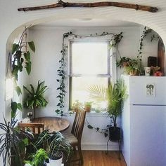 10 Tips How To Build A Lightweight House Decoration Design - Plant-filled kitchen- so lovely! The Best of home indoor in Deco Design, Design Case, Interior Exterior, Interior Design, House Ideas, Decoration Inspiration, Decor Ideas, Home And Deco, House Goals
