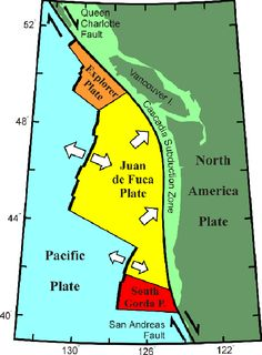 cascadia subduction zone tsunami google search