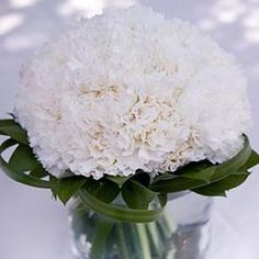 flower balls for wedding centerpieces | Beautiful Carnation Centerpieces. Easy to do arrangements for DIY ...