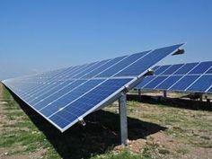 Grazie alle alghe i pannelli solari sono ancora più ecologici