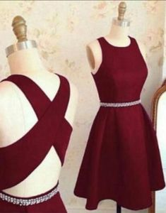 Lovely Cute Prom Dress,Short Prom Dresses,Homecoming Dress,Prom Party Dress on Luulla