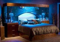 Fish tank over bed