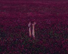 Фотографии Jean Gallagher | 45 альбомов
