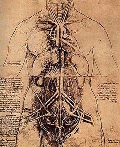 Science and inventions of Leonardo da Vinci - Wikipedia