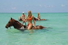 Caribbean Sea horse ride. On the beach and in the water. $75/person. Grand Cayman Island