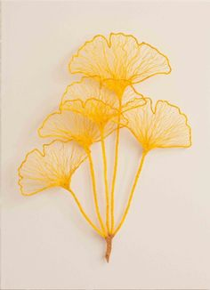 Meredith Woolnough | Available Works.  Ginkgo Study #2, $750 (51x62cm)