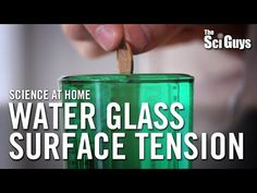 The Sci Guys: Science at Home - - Water Glass Surface Tension - Surface… Surface Tension, Water Glass, Science For Kids, Zoology, Grade 2, Exploring, Drop, Seasons, Guys