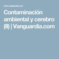 Contaminación ambiental y cerebro (II) | Vanguardia.com