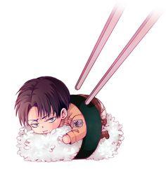 Rivaille, Sushi, so cute! - Shingeki no Kyojin: