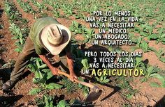 Agricultura Cowboy Hats, Quotes, Ideas, Agriculture, Smart City, Once In A Lifetime, Righteousness, Vegetable Garden, Minimalism