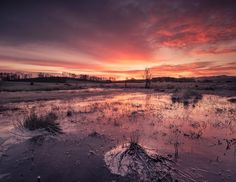 https://flic.kr/p/CHmNY4 | Sunrise Over A Frozen Flooded Field | Sunrise Over A Frozen Flooded Field   I had planned heading to Threave Castle to see what the winter conditions would bring for Sunrise. I was standing making a few images of the Castle, a little bit of frost, a tiny bit of snow, a little bit pink in the sky....something was telling me to turn around, luckily:)    Threave Estates, Castle Douglas, Dumfries and Galloway   Please feel free to leave a comment or share with your…