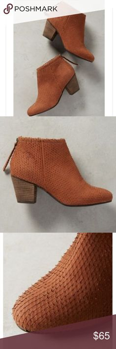 """Seychelles booties New without box, unworn! Lien.do by Seychelles Coimbra textured leather booties in the shade honey with a 2.5"""" block heel. Perfect for fall!  I was looking forward to wearing them but I broke my foot and can't wear anything with a heel for some months. These are true to size 8. No trades. Seychelles Shoes Ankle Boots & Booties"""