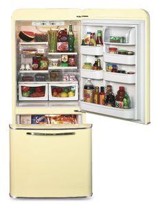 northstar fridge model 1950 inside look