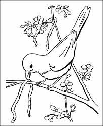 The Bird Eating Caterpillar Coloring Pages - Bird Coloring Pages : KidsDrawing – Free Coloring Pages Online Butterfly Coloring Page, Bird Coloring Pages, Printable Coloring Pages, Coloring Pages For Kids, Coloring Sheets, Coloring Books, Bird Drawings, Easy Drawings, Spring Scene