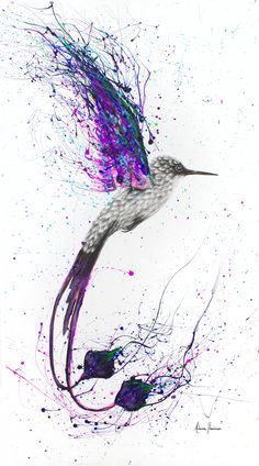 A bird painting I created on long canvas (rolled). I used acrylics and charcoal to provide a vivid painting against the strong contrast of the charcoal. Bird Painting Acrylic, Hummingbird Painting, Abstract Canvas Art, Watercolor Art, Splatter Art, Paint Splatter Tattoo, Ballet Art, Bird Artwork, Wow Art
