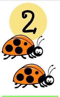* Insecten! 2-10