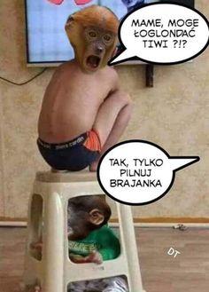 Weekend Humor, Best Memes, Fnaf, Jokes, Husky Jokes, Memes, Funny Pranks, Lifting Humor, Humor