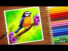 how to draw spring bird || colored pencils tutorial || bird sitting on flowers tree branch drawing - YouTube