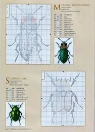Image result for knitting pattern fair isle bugs insects