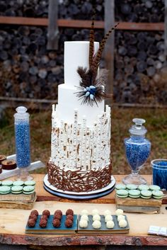 Birch Bark Cake created by The Cake Museum.  Is this the one you were thinking about?