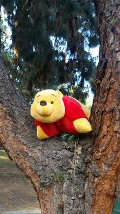 The most cuddly bear and pillow ever! Winne The Pooh, Disney Winnie The Pooh, Disney Pillow Pets, Animal Jam, Animal Pillows, Searching, Mickey Mouse, Random Stuff, Honey