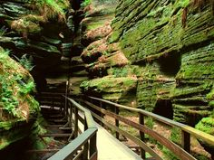 Wow! I've been among rugged mountains or vast, rocky deserts, so I find this mossy canyon simply amazing!  --  Witches Gulch, Wisconsin